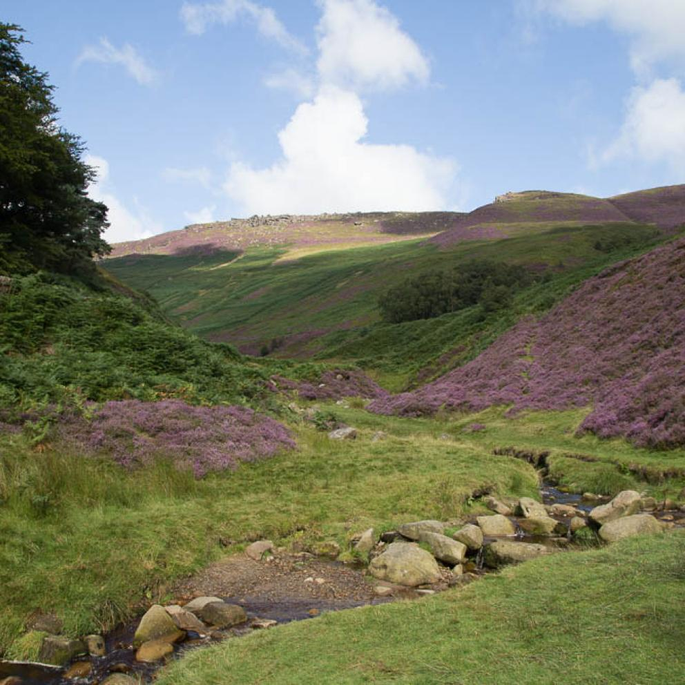Stunning surroundings at Edale Gathering